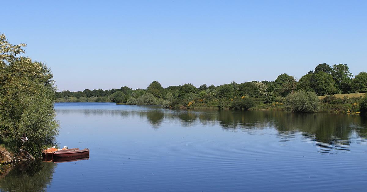 Lac de la Bultière à La Boissière-de-Montaigu