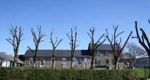 Image - école des Tilleuls - la Boissière de Montaigu