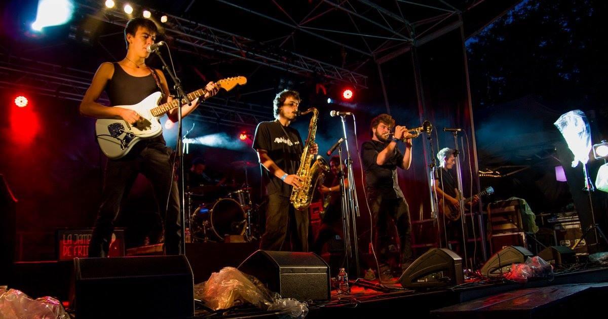 Image - festival Canasson de la Boissière-de-Montaigu